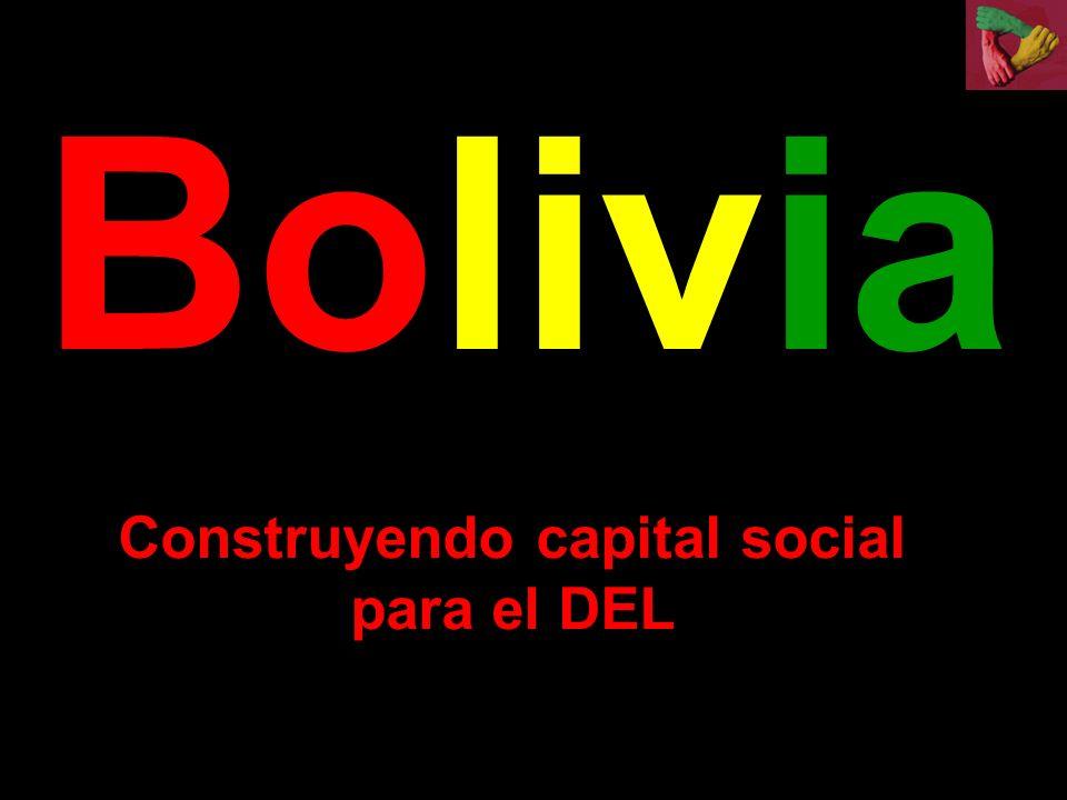 Construyendo capital social para el DEL