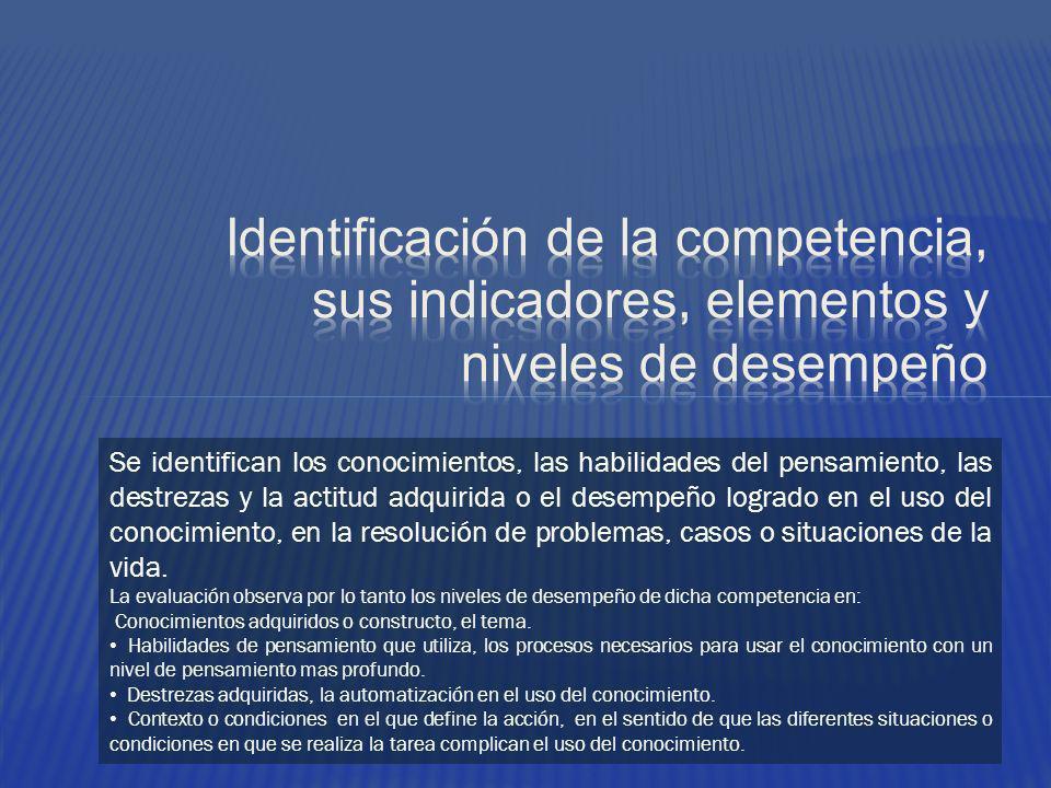 Identificación de la competencia, sus indicadores, elementos y niveles de desempeño