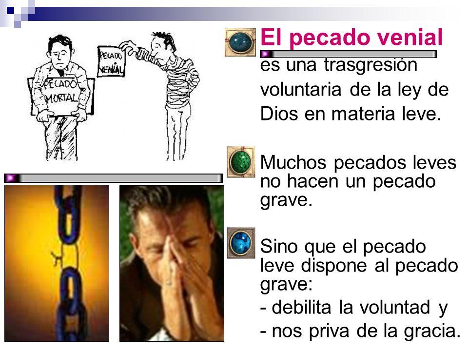 El pecado venial es una trasgresión voluntaria de la ley de Dios en materia leve.