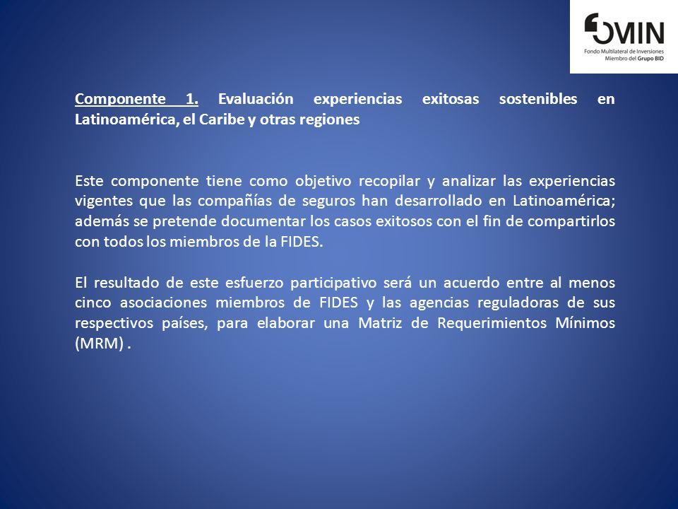 Componente 1. Evaluación experiencias exitosas sostenibles en Latinoamérica, el Caribe y otras regiones