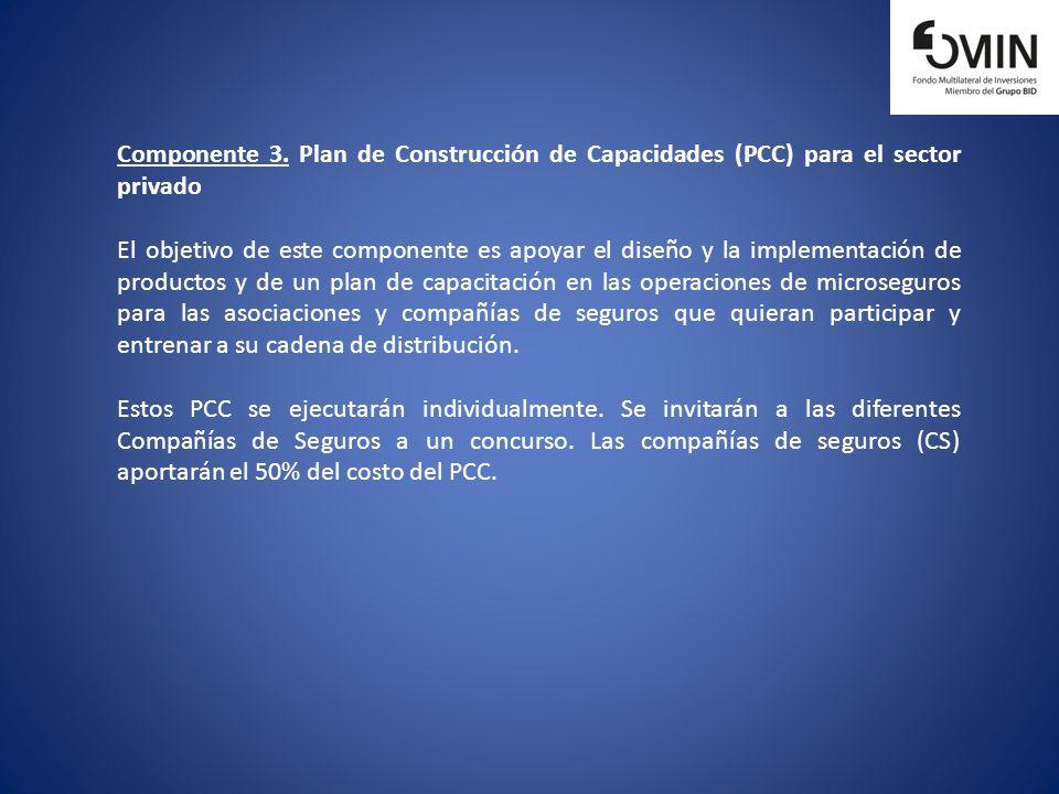 Componente 3. Plan de Construcción de Capacidades (PCC) para el sector privado