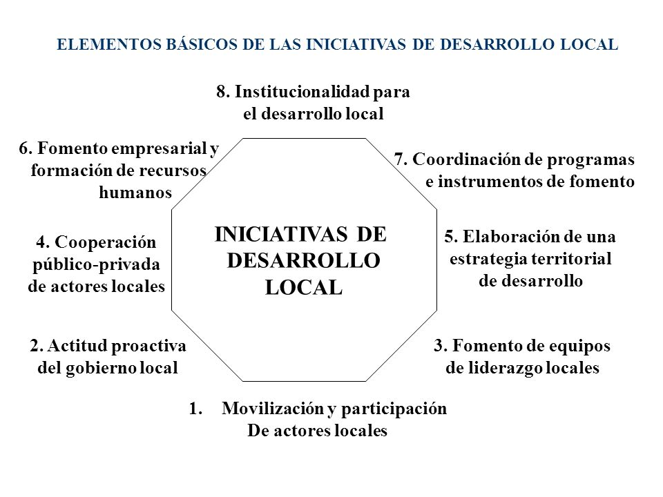 INICIATIVAS DE DESARROLLO LOCAL