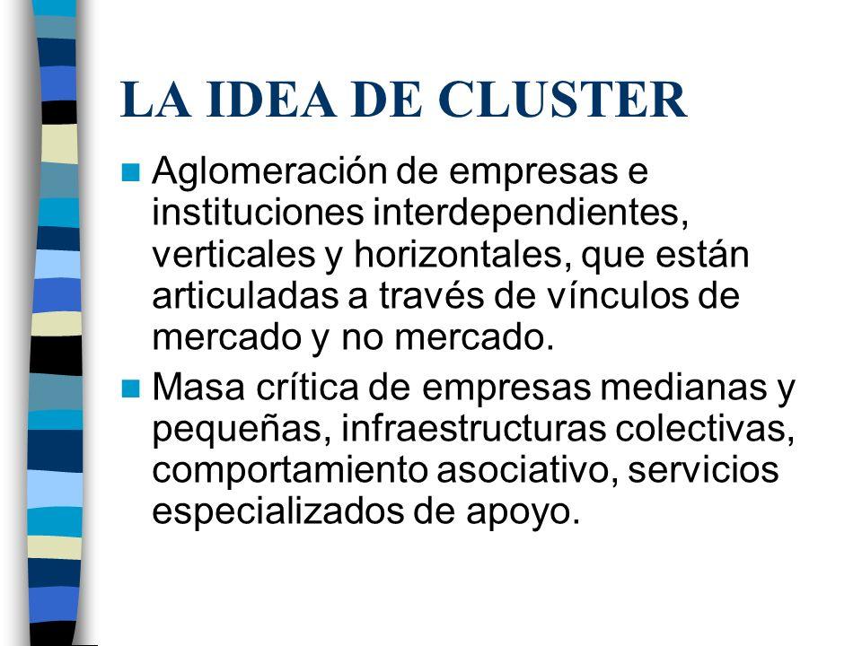 LA IDEA DE CLUSTER