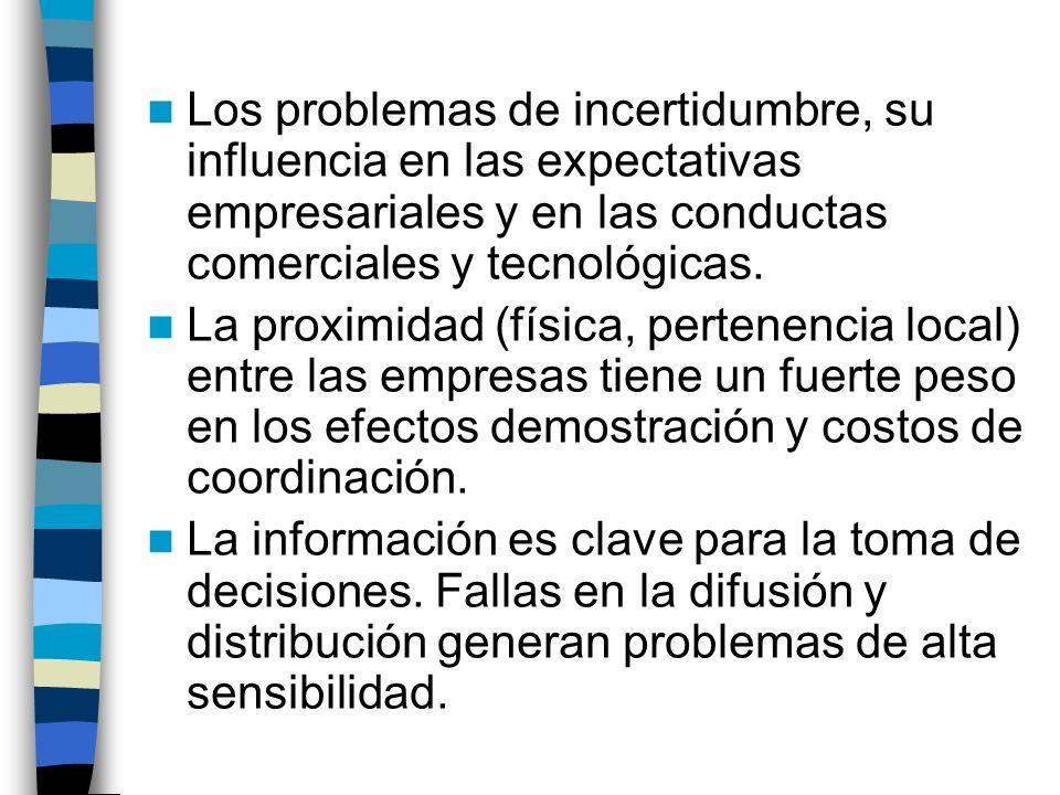 Los problemas de incertidumbre, su influencia en las expectativas empresariales y en las conductas comerciales y tecnológicas.