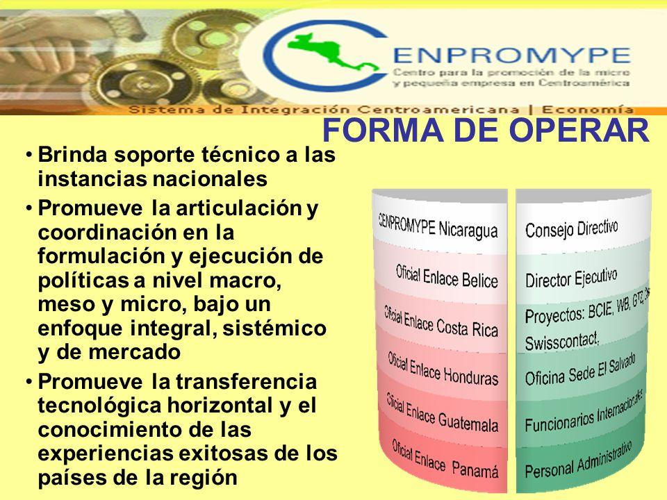 FORMA DE OPERAR Brinda soporte técnico a las instancias nacionales