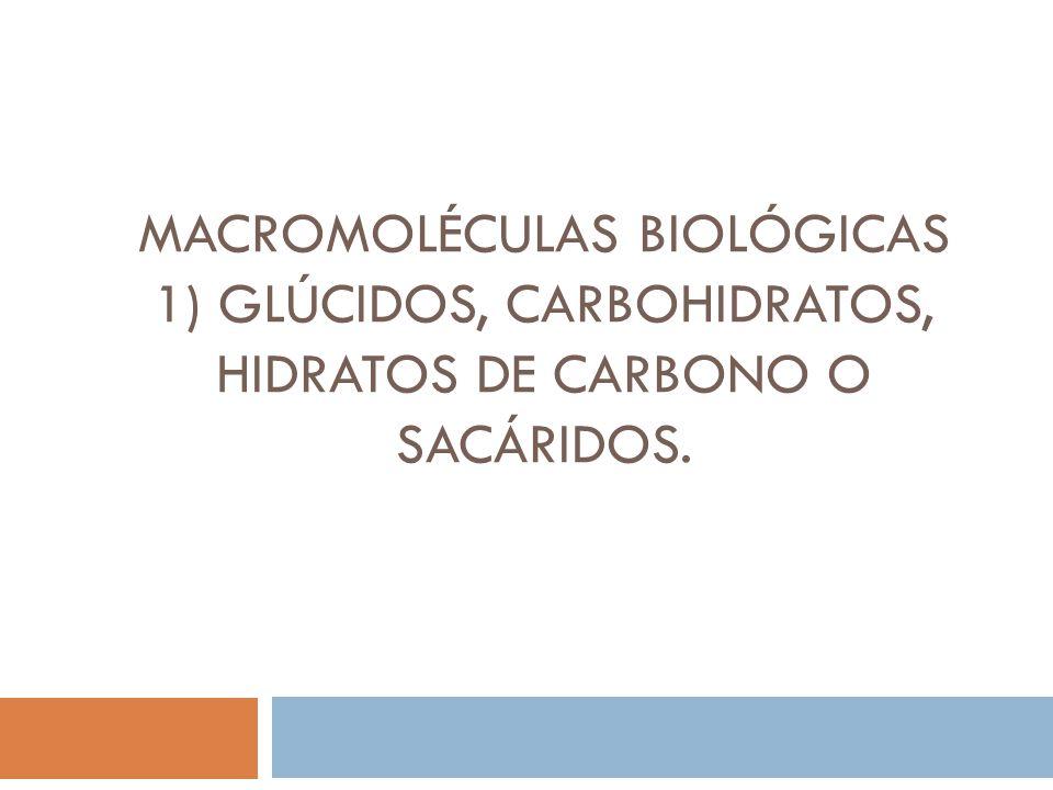 MACROMOLÉCULAS BIOLÓGICAS 1) Glúcidos, carbohidratos, hidratos de carbono o sacáridos.