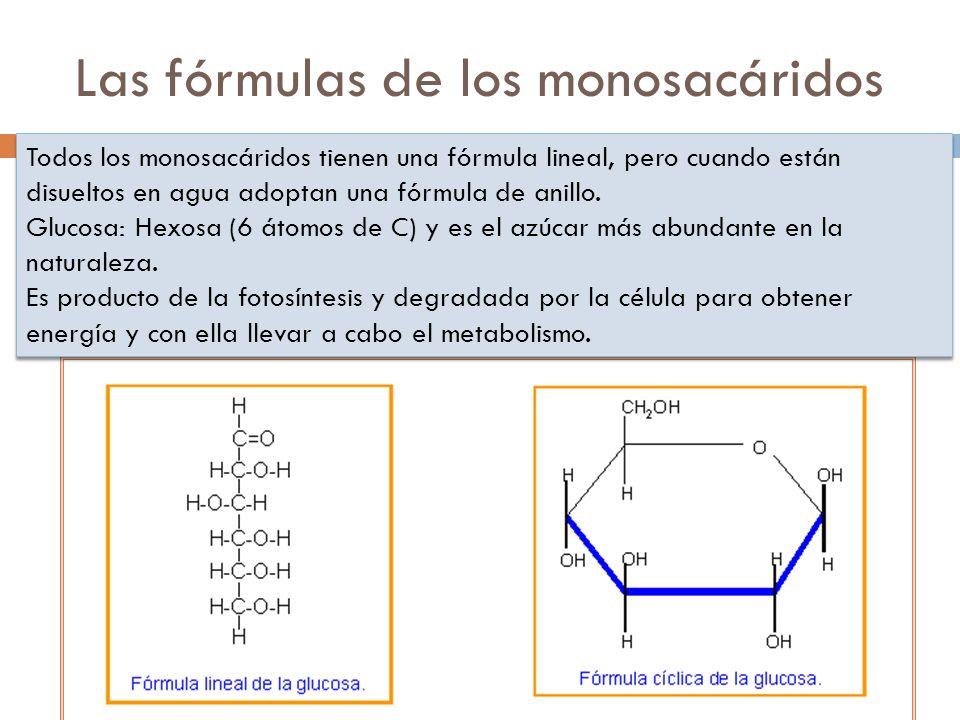Las fórmulas de los monosacáridos
