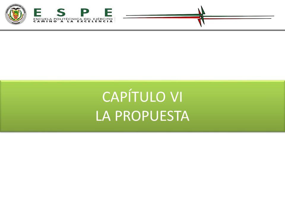 CAPÍTULO VI LA PROPUESTA