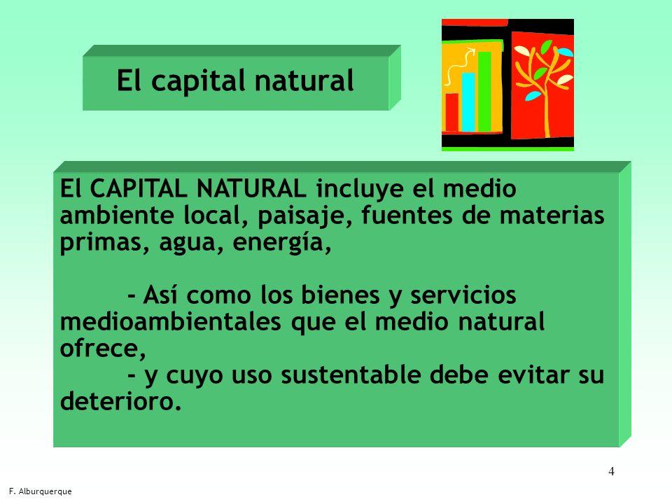El capital natural El CAPITAL NATURAL incluye el medio ambiente local, paisaje, fuentes de materias primas, agua, energía,