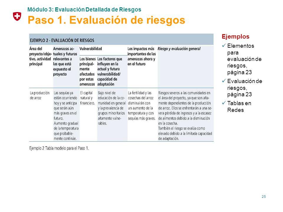 Paso 1. Evaluación de riesgos