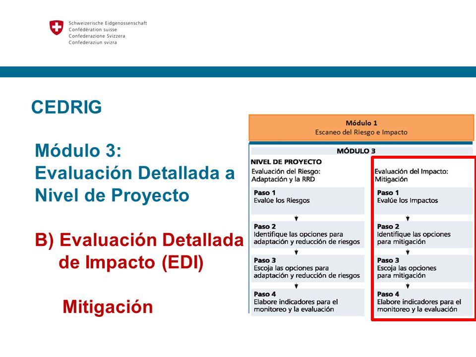 CEDRIG Módulo 3: Evaluación Detallada a Nivel de Proyecto. B) Evaluación Detallada de Impacto (EDI)