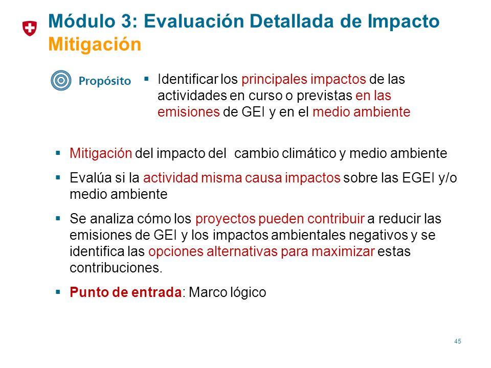 Módulo 3: Evaluación Detallada de Impacto Mitigación