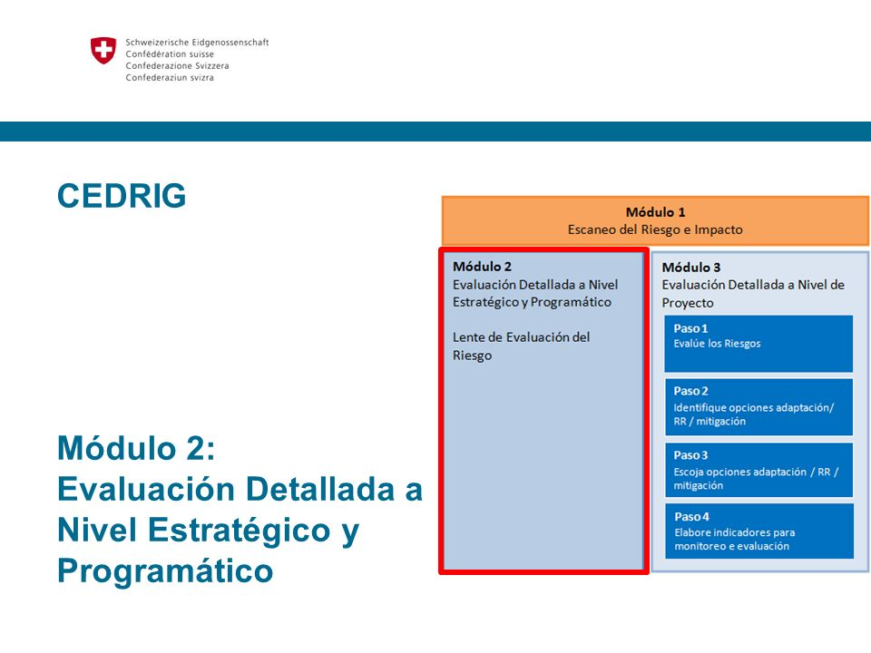 CEDRIG Módulo 2: Evaluación Detallada a Nivel Estratégico y Programático