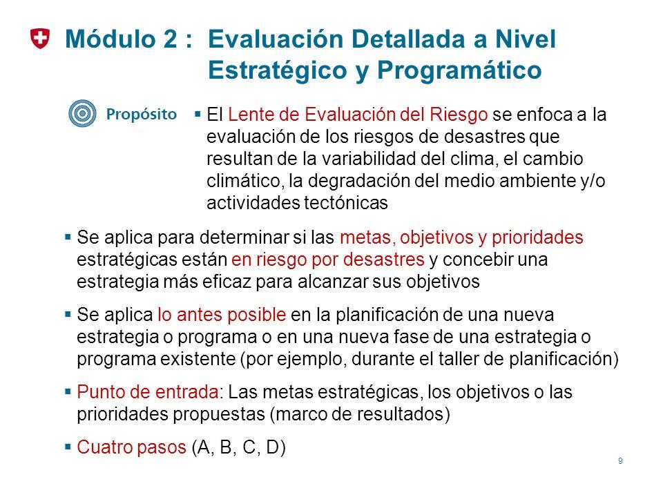 Módulo 2 : Evaluación Detallada a Nivel Estratégico y Programático