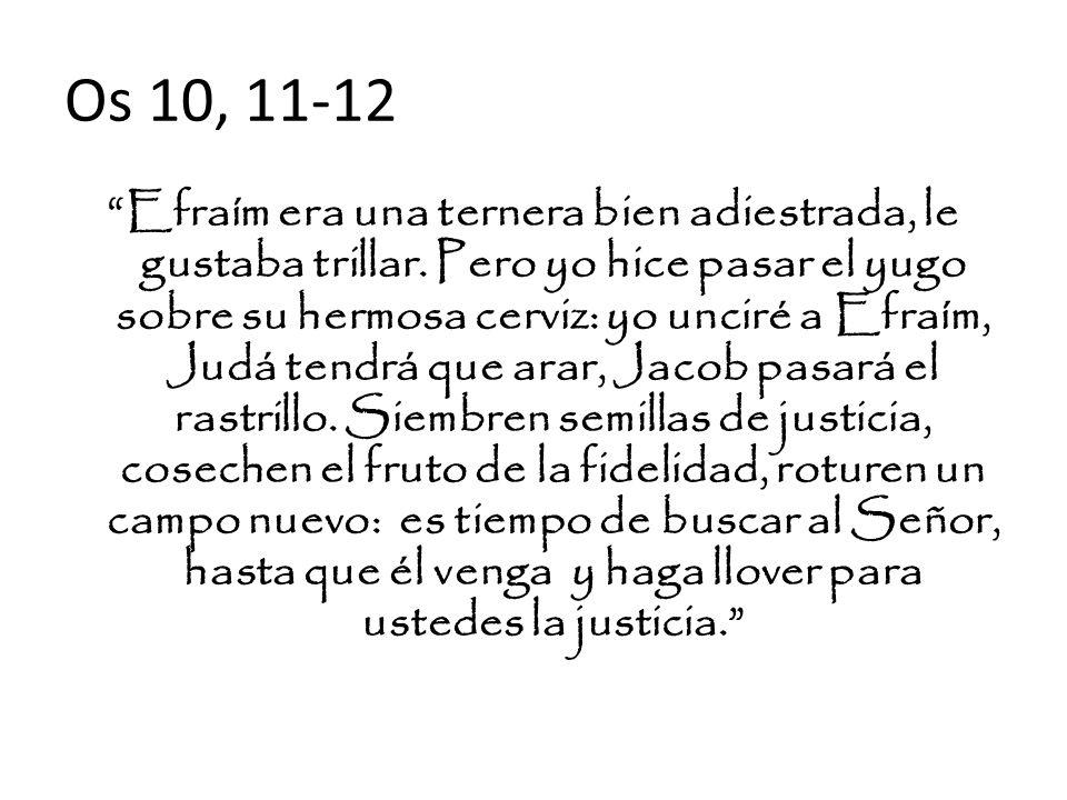 Os 10, 11-12
