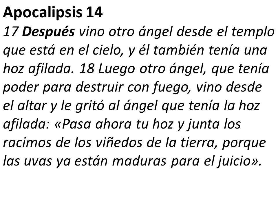 Apocalipsis 14