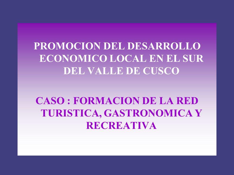 PROMOCION DEL DESARROLLO ECONOMICO LOCAL EN EL SUR DEL VALLE DE CUSCO