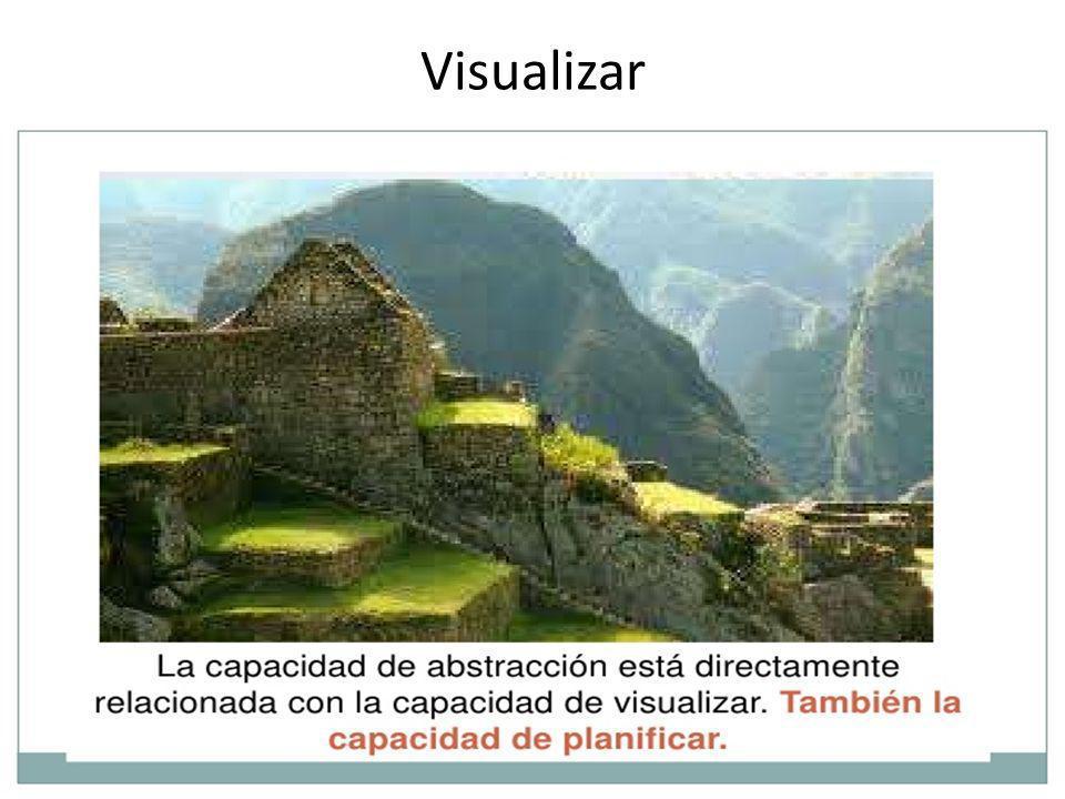 Visualizar