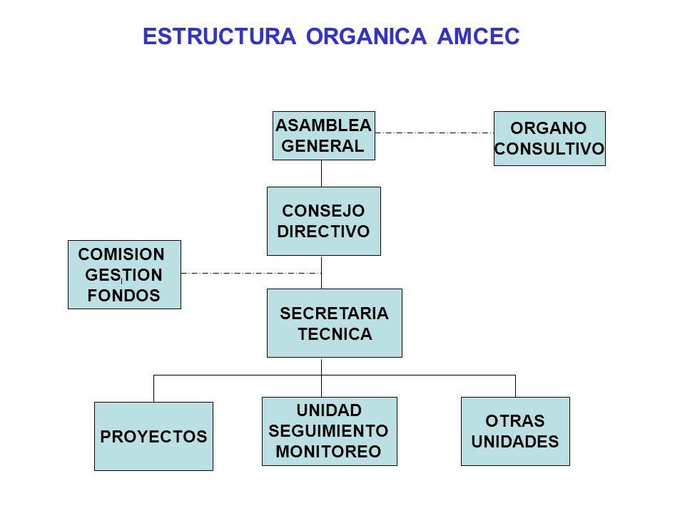 ESTRUCTURA ORGANICA AMCEC