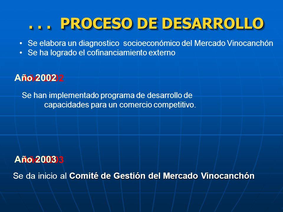 . . . PROCESO DE DESARROLLO Año 2002 Año 2003