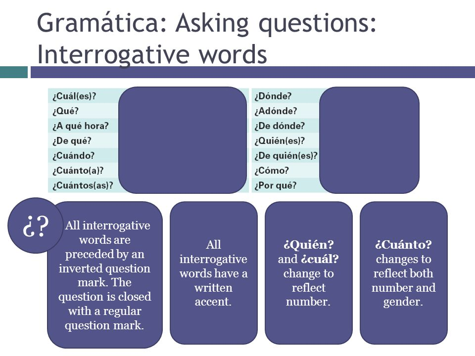 Gramática: Asking questions: Interrogative words