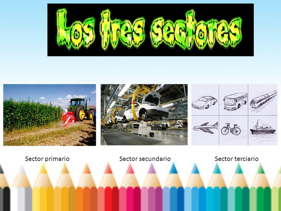 Sector primario Sector secundario Sector terciario