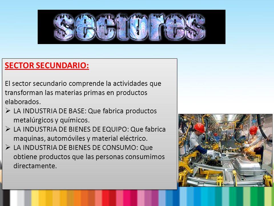 SECTOR SECUNDARIO: El sector secundario comprende la actividades que transforman las materias primas en productos elaborados.