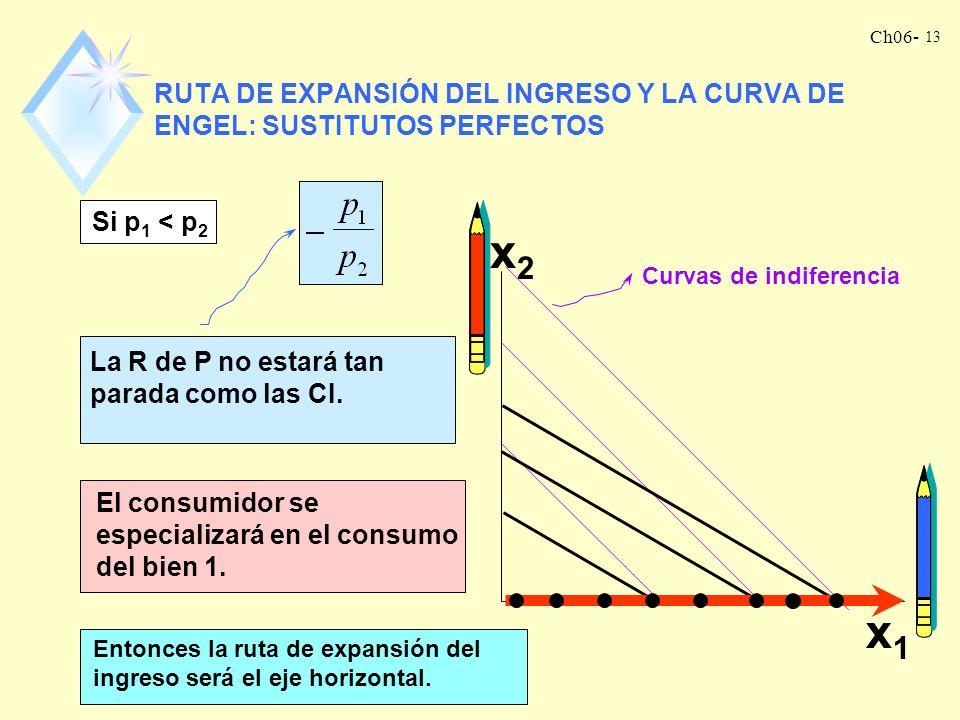 RUTA DE EXPANSIÓN DEL INGRESO Y LA CURVA DE ENGEL: SUSTITUTOS PERFECTOS