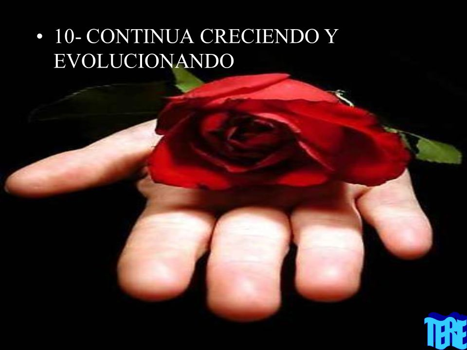 10- CONTINUA CRECIENDO Y EVOLUCIONANDO