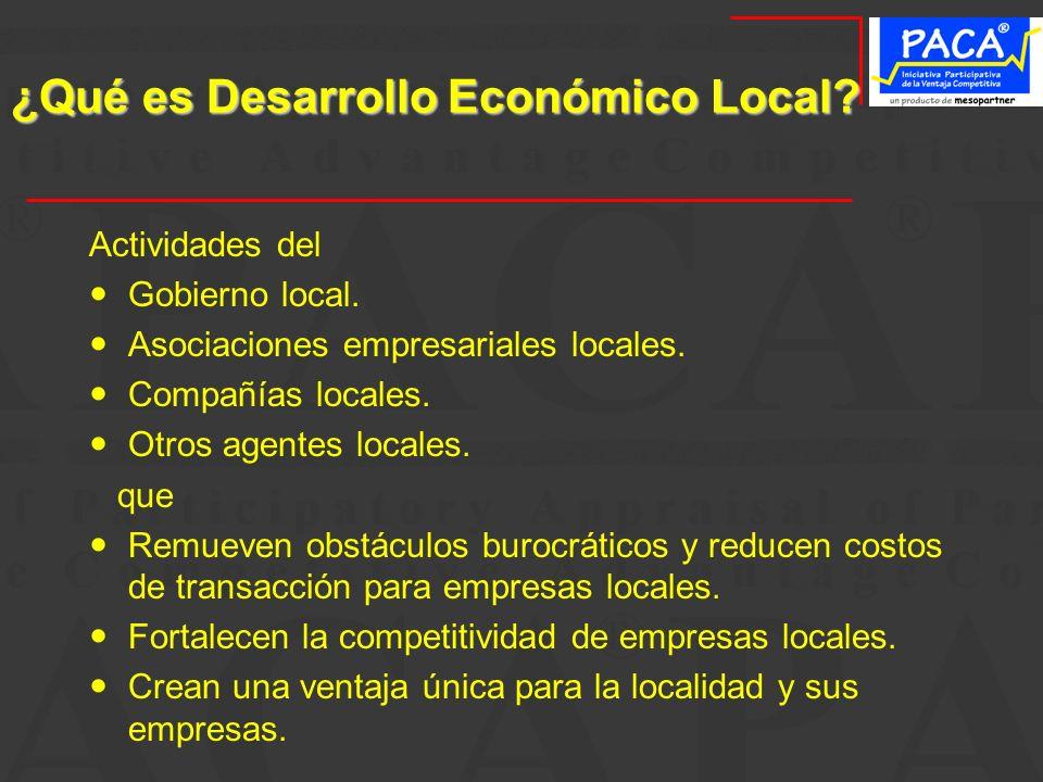 ¿Qué es Desarrollo Económico Local