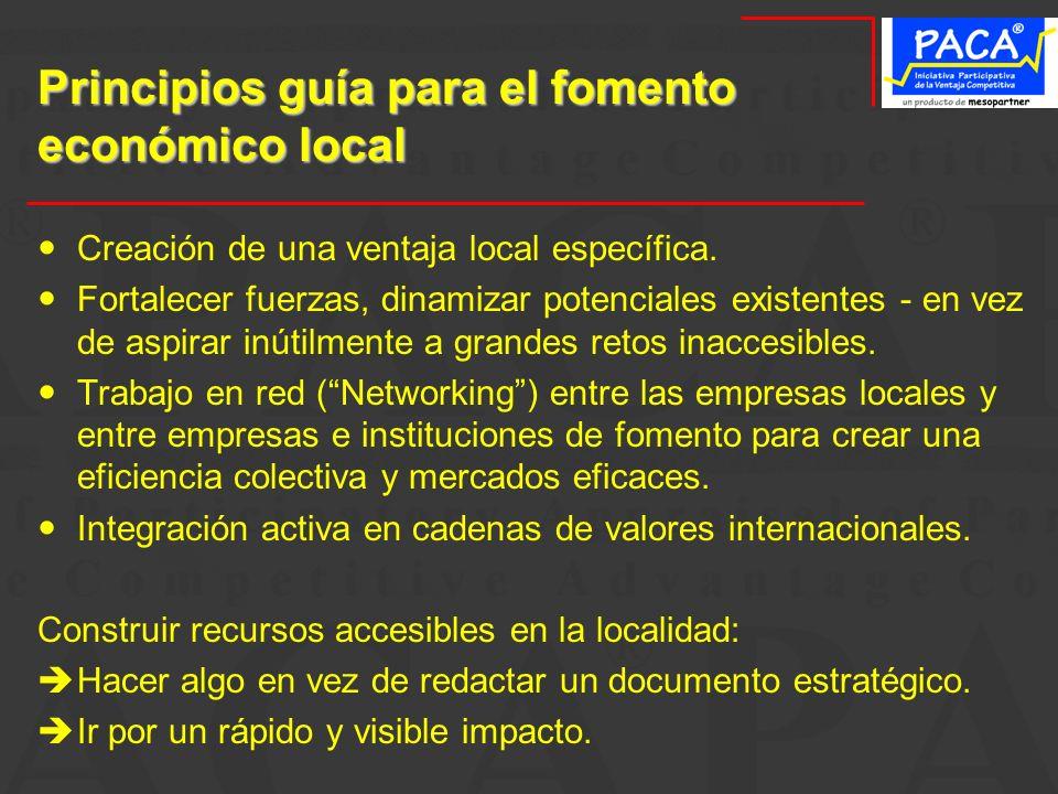 Principios guía para el fomento económico local