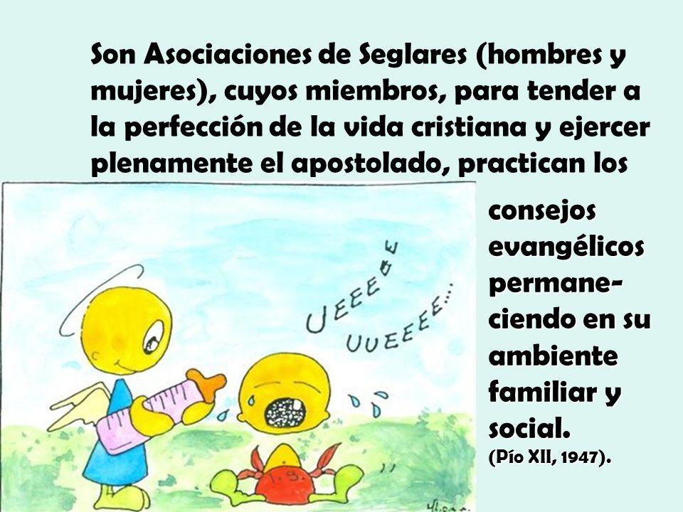 Son Asociaciones de Seglares (hombres y mujeres), cuyos miembros, para tender a la perfección de la vida cristiana y ejercer plenamente el apostolado, practican los
