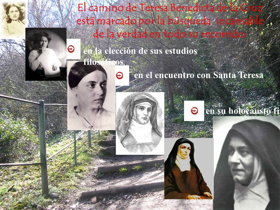 El camino de Teresa Benedicta de la Cruz