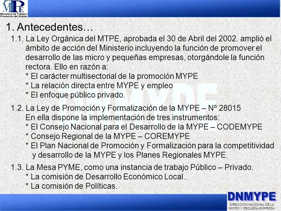 DIRECCION NACIONAL DE LA MICRO Y PEQUEÑA EMPRESA