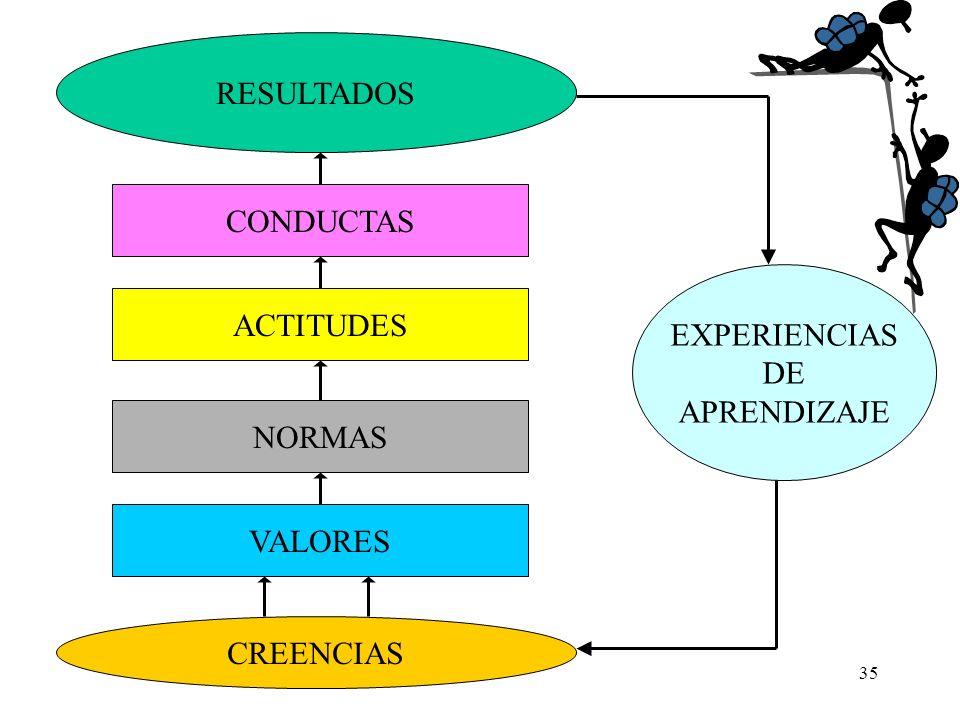 RESULTADOS CONDUCTAS EXPERIENCIAS DE APRENDIZAJE ACTITUDES NORMAS VALORES CREENCIAS