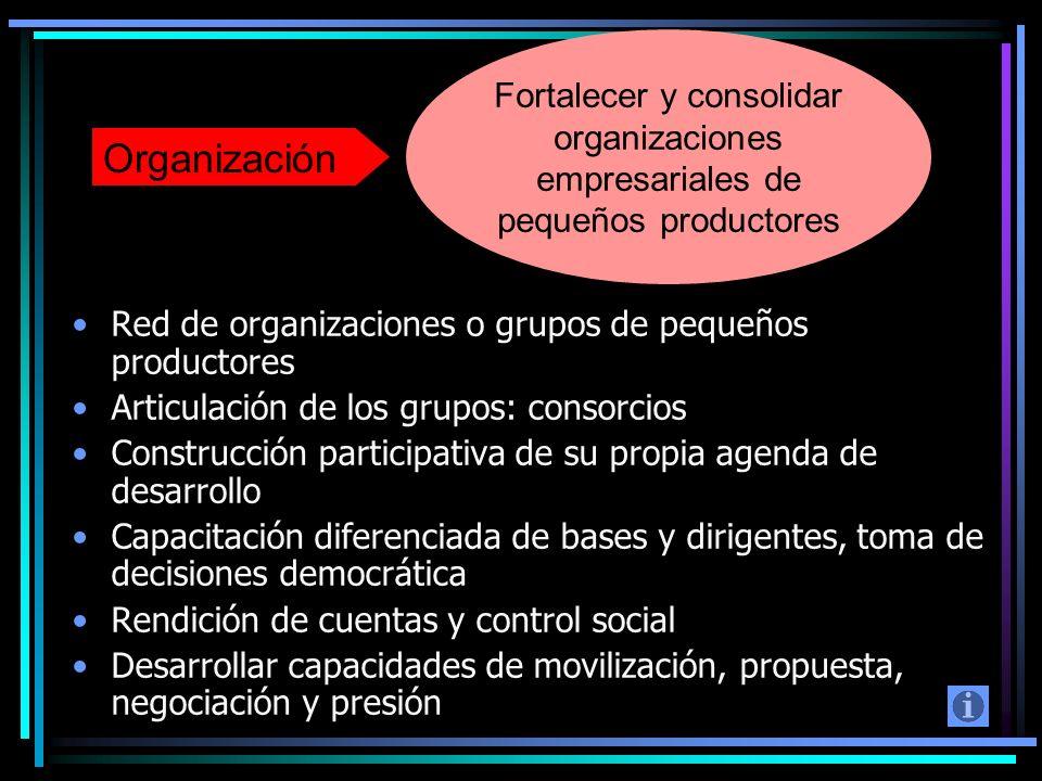 Fortalecer y consolidar organizaciones empresariales de pequeños productores