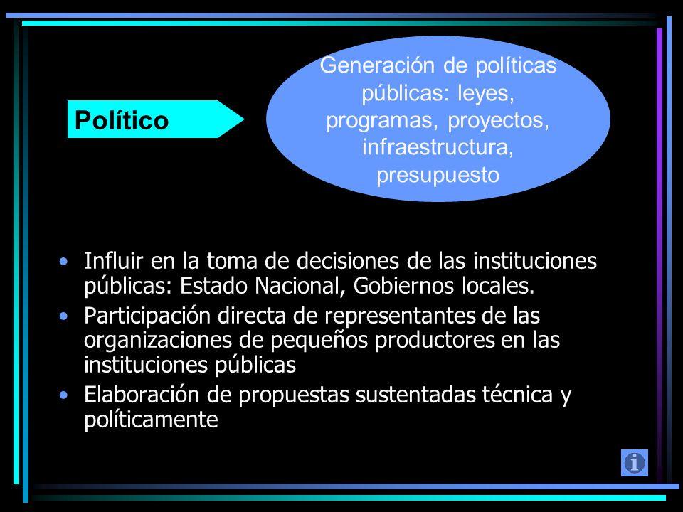 Generación de políticas públicas: leyes, programas, proyectos, infraestructura, presupuesto