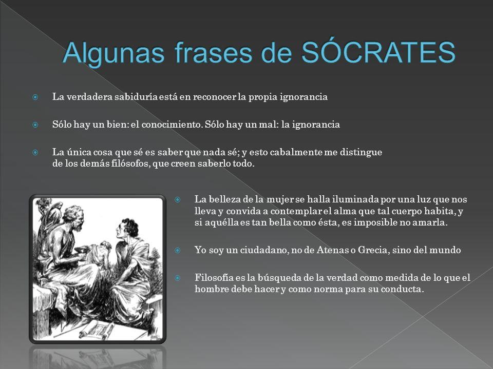 Algunas frases de SÓCRATES