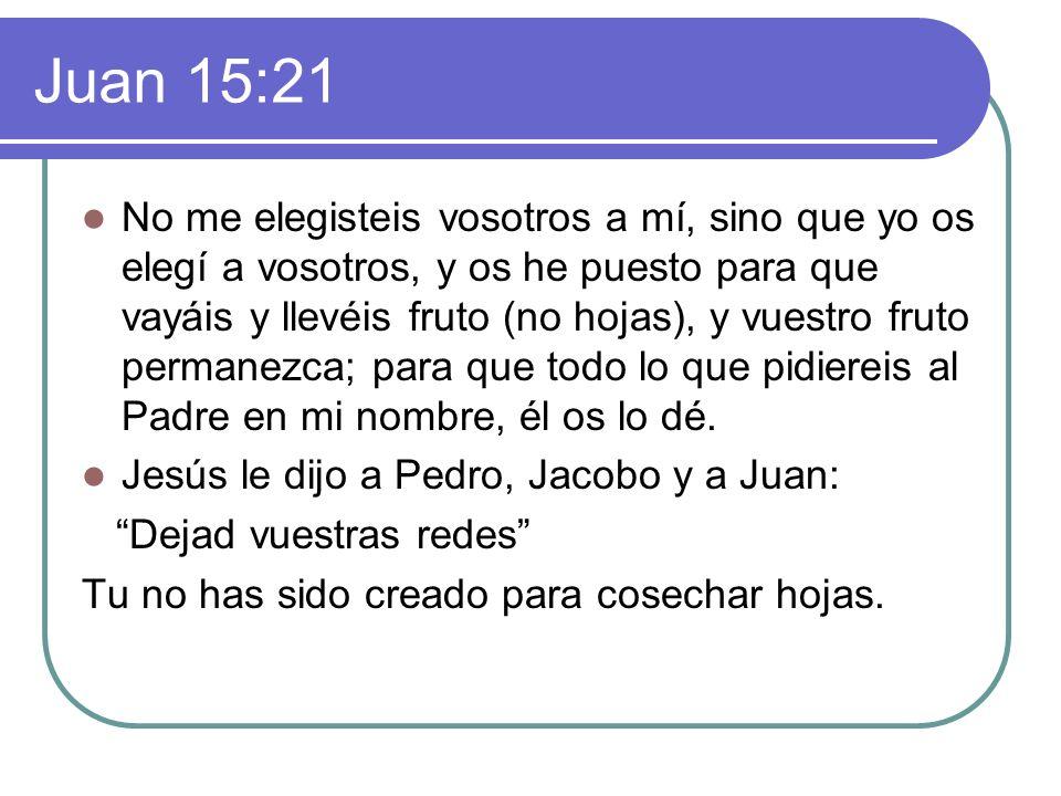 Juan 15:21