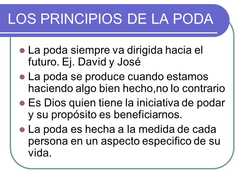 LOS PRINCIPIOS DE LA PODA