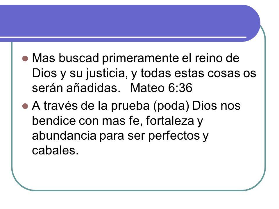 Mas buscad primeramente el reino de Dios y su justicia, y todas estas cosas os serán añadidas. Mateo 6:36
