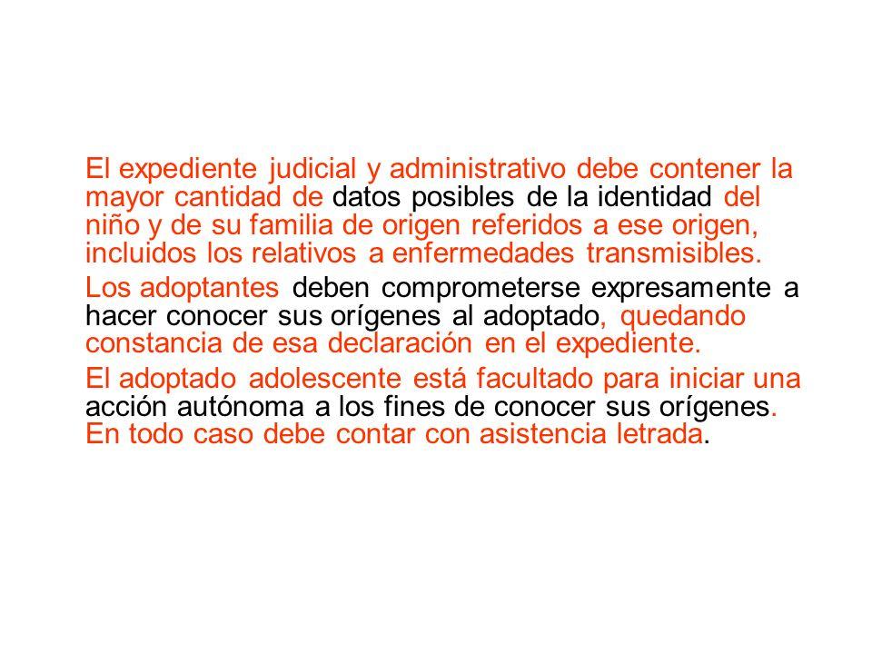 El expediente judicial y administrativo debe contener la mayor cantidad de datos posibles de la identidad del niño y de su familia de origen referidos a ese origen, incluidos los relativos a enfermedades transmisibles.
