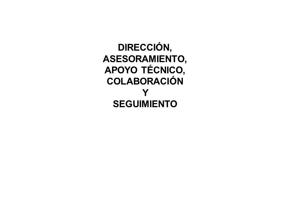 DIRECCIÓN, ASESORAMIENTO, APOYO TÉCNICO, COLABORACIÓN Y SEGUIMIENTO