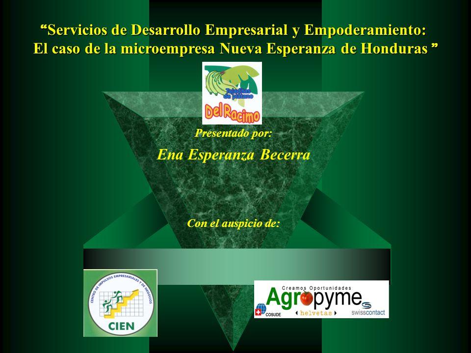 Servicios de Desarrollo Empresarial y Empoderamiento: