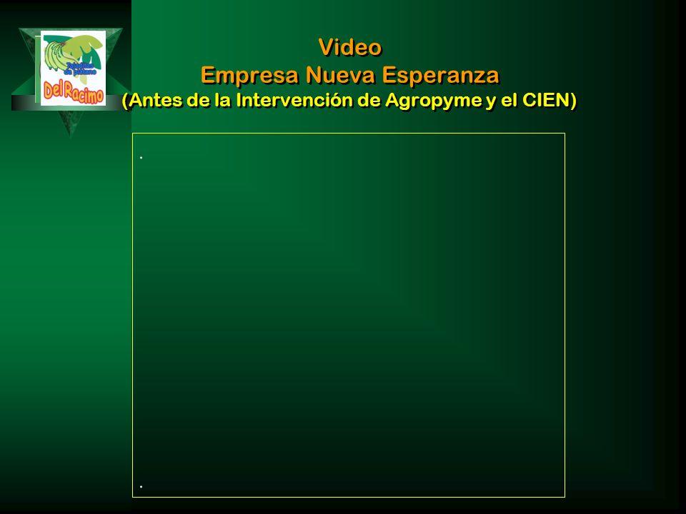 Video Empresa Nueva Esperanza (Antes de la Intervención de Agropyme y el CIEN)