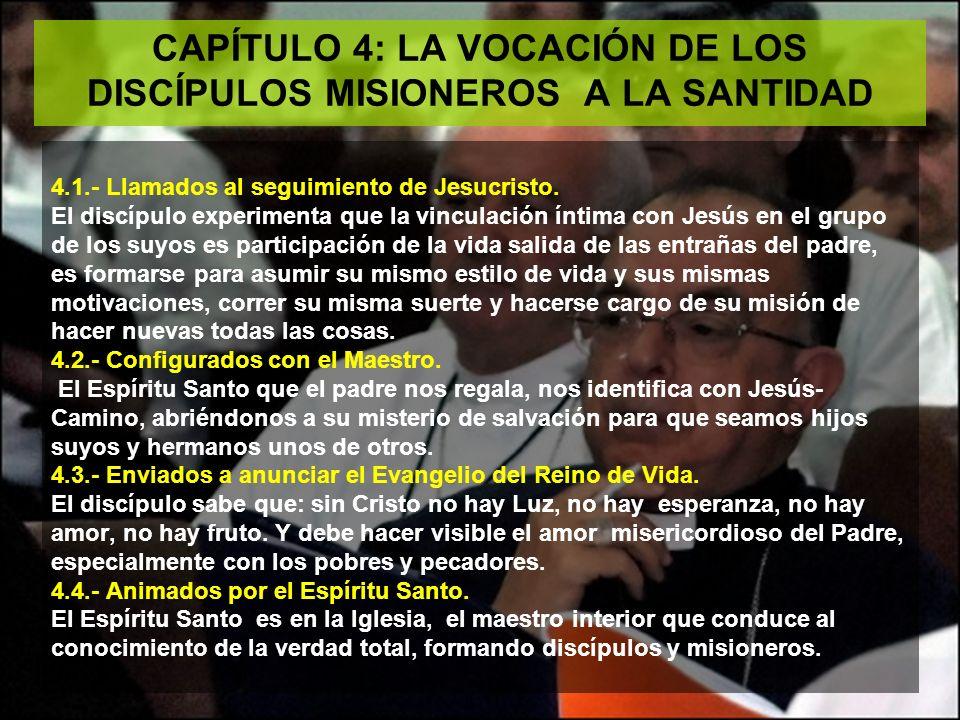 CAPÍTULO 4: LA VOCACIÓN DE LOS DISCÍPULOS MISIONEROS A LA SANTIDAD