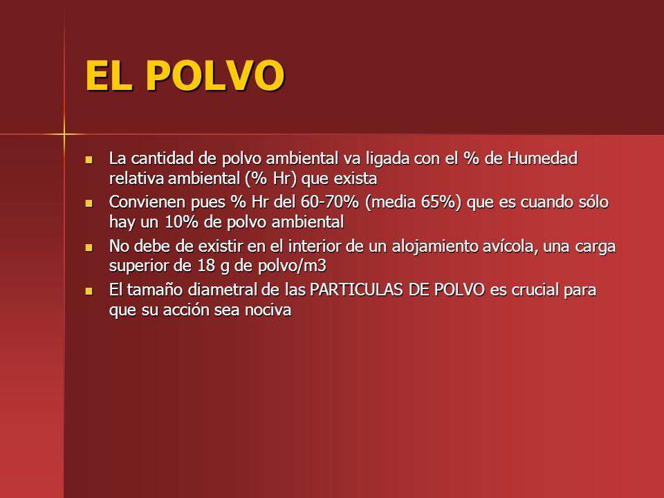 EL POLVO La cantidad de polvo ambiental va ligada con el % de Humedad relativa ambiental (% Hr) que exista.