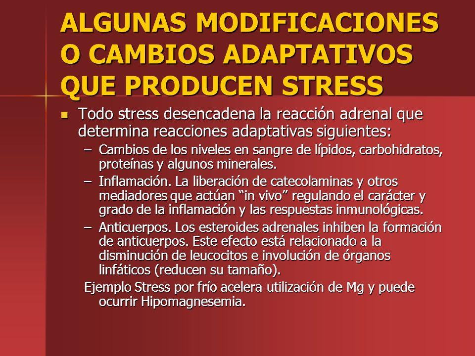 ALGUNAS MODIFICACIONES O CAMBIOS ADAPTATIVOS QUE PRODUCEN STRESS