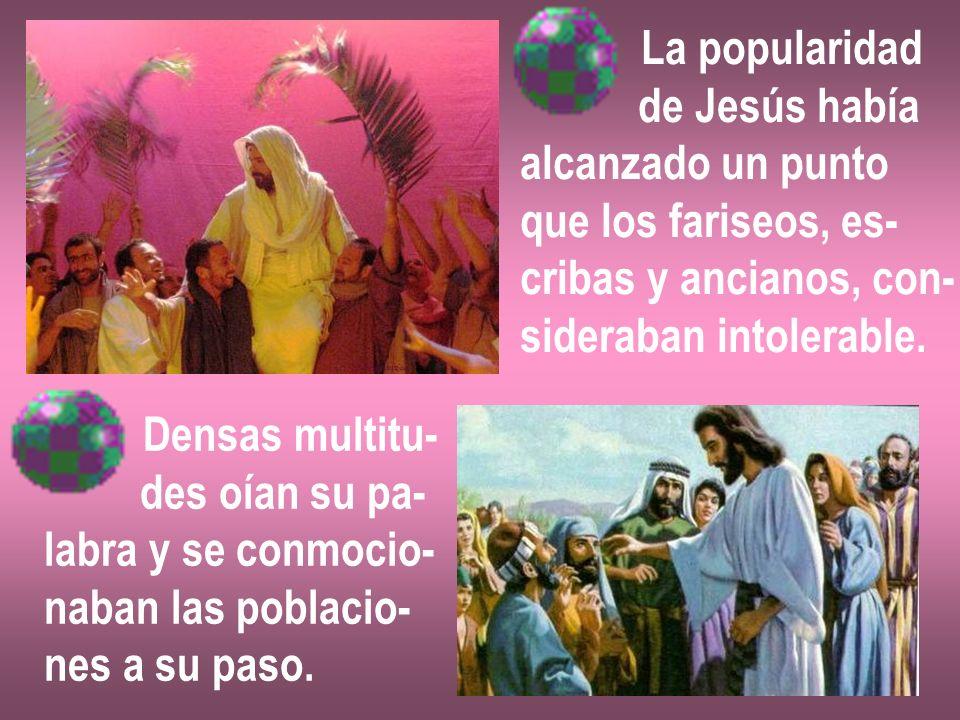 La popularidad de Jesús había. alcanzado un punto. que los fariseos, es- cribas y ancianos, con-