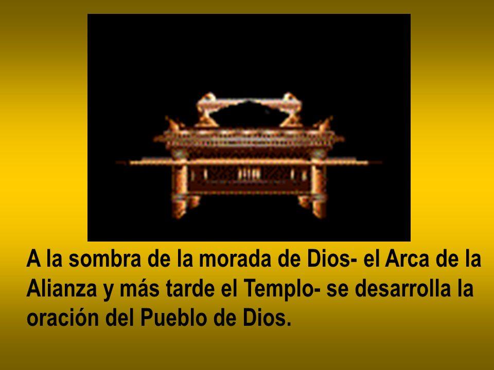 A la sombra de la morada de Dios- el Arca de la